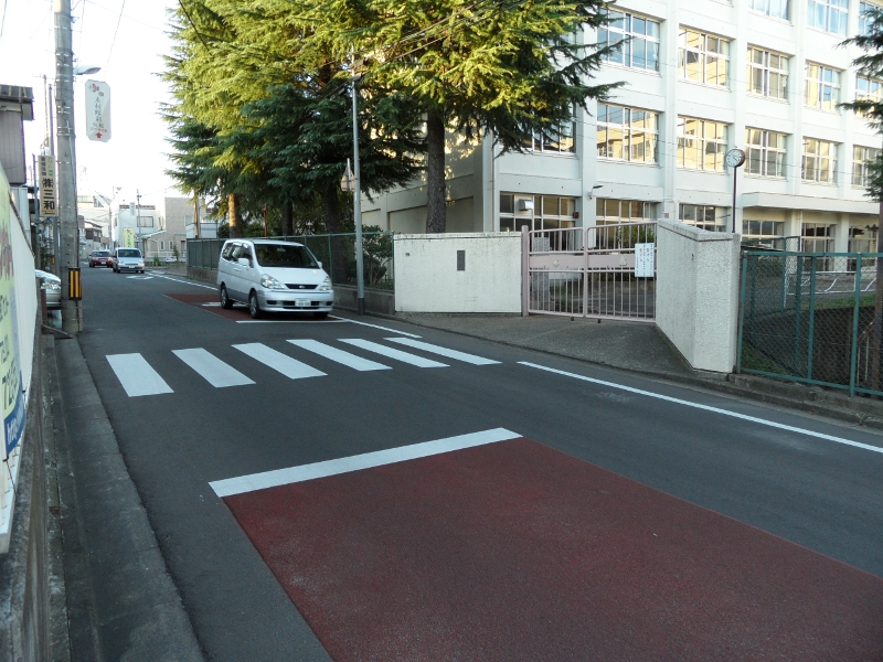 A street passing by a school gate, with a zebra crossing in front of the gate.